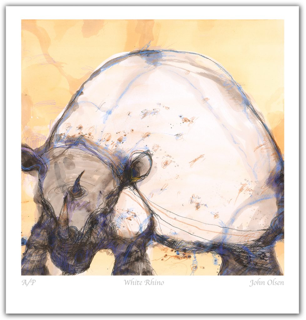 white-rhino-promo-file